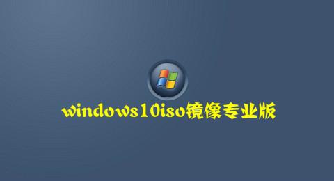windows10iso镜像专业版